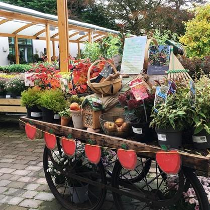 Apple Cart at Beetham Nurseries Apple Weekend